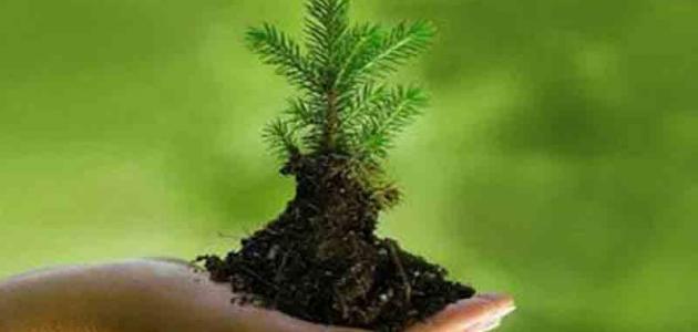 ألمانيا تتراجع ضمن مؤشر حماية البيئة