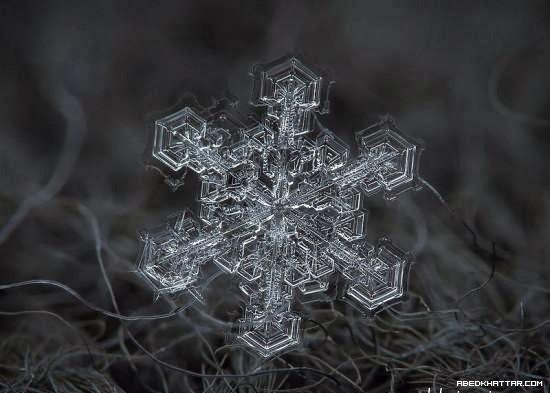 الثلج في أدق تفاصيله