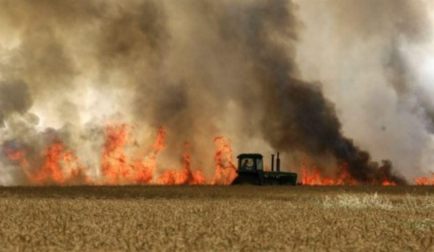 اشتعال النيران في أحراش مستوطنات شرق مخيم البريج