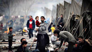 في اليوم العالمي للاجئين 41% من مجمل السكان في فلسطين لاجئون