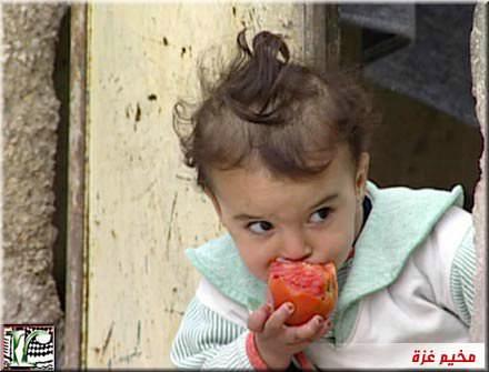 صور من المخيمات الفلسطينية في الأردن وسوريا ولبنان