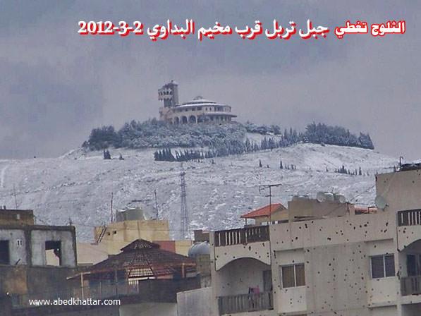 الثلوج تغطي جبل تربل قرب مخيم البداوي / 2012