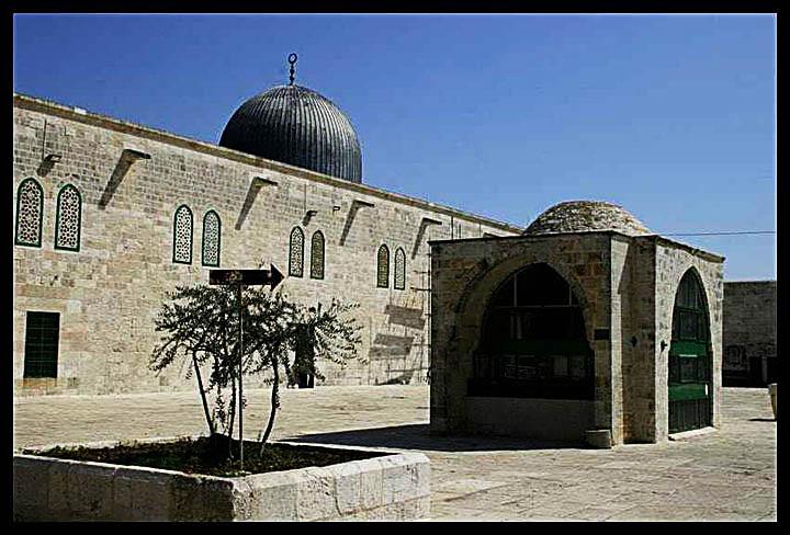 فلسطين الجميلة .. التى لم تراها من قبل وحتي لا ننسي فلسطين