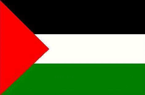 علم فلسطين....وأعلام الأحزاب !!!