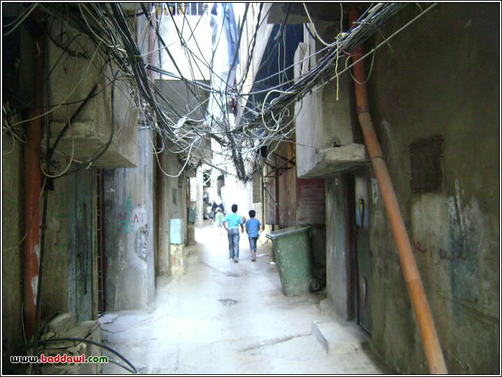 صور جديدة من مخيم البداوي لعام 2010