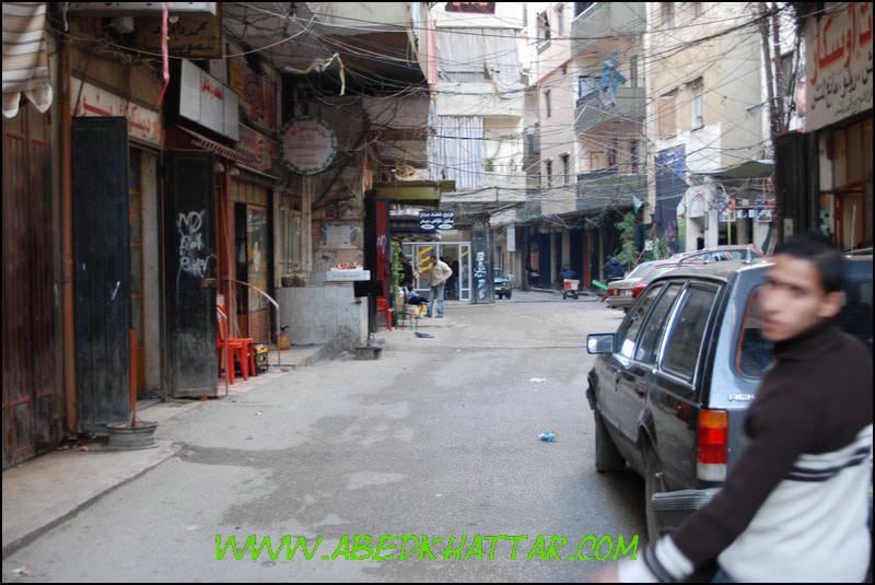 نشاهد معا صور مخيم البداوي الجديده لعام 2009