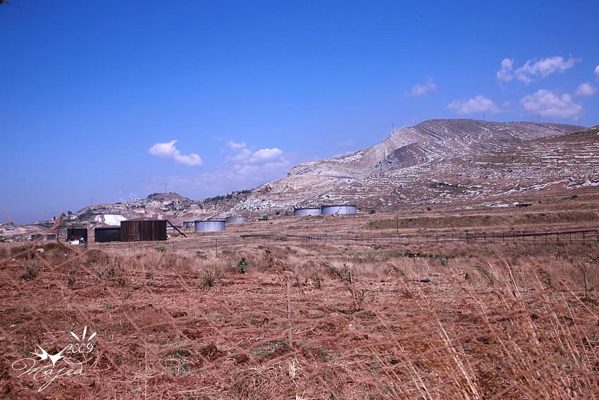 بعض الصور لمخيم البداوي وجبل تربل بعدسة الاخ ماجد صديق