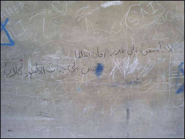 شاهد صور جديده من مخيم نهر البارد
